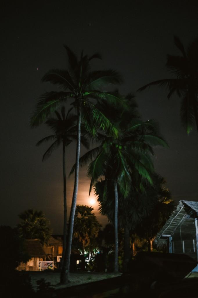 SriLanka_0121
