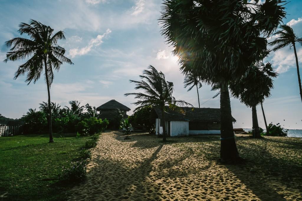SriLanka_0131
