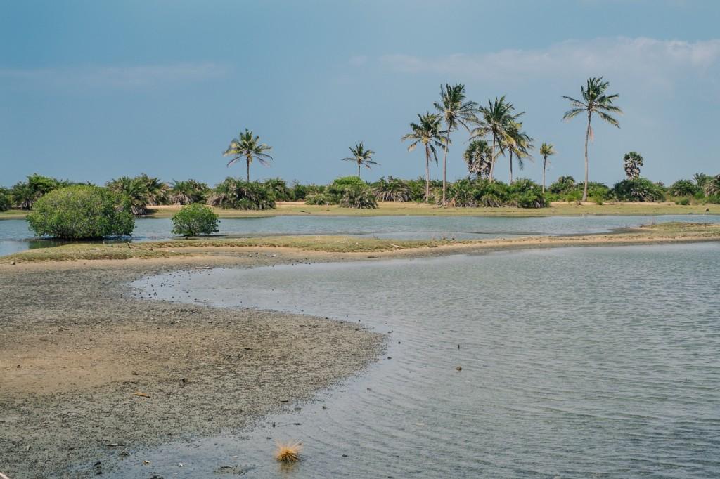 SriLanka_0248