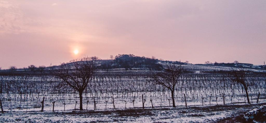 Tannenberg_2014-01-29_0003